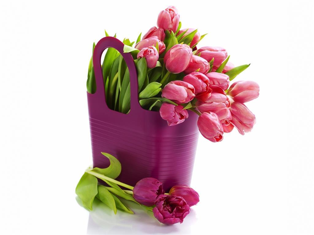 Kartal Dekorasyon Çiçekleri